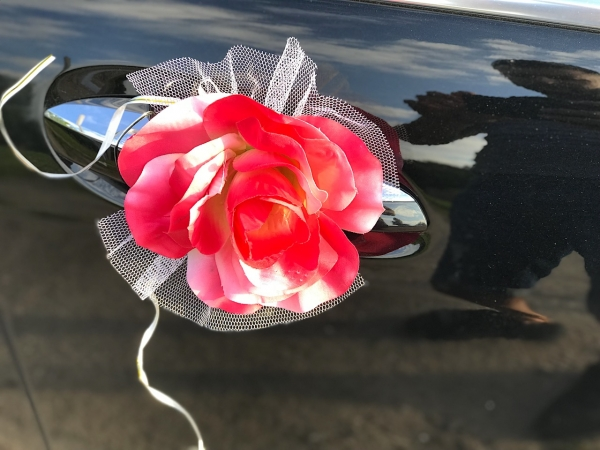 Объемное сердце из роз (ярко-розовый цвет)